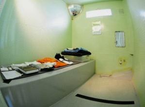 http://www.miamiherald.com/2011/12/24/2560773/secret-guantanamo-cell-block-cost.html